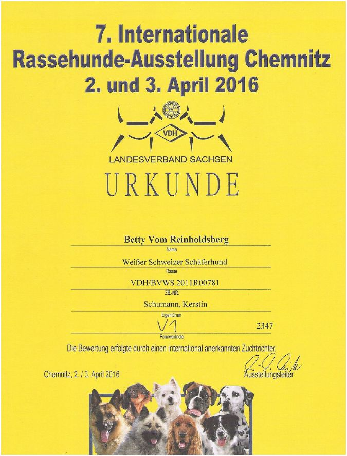 7. Internationale Rassehundeausstellung Chemnitz 2016